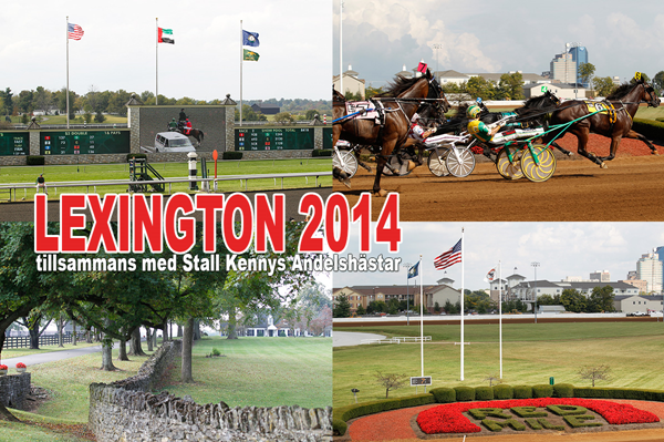 lexington_2014.jpg