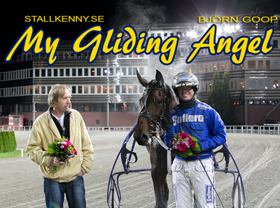 my_gliding_angel_20131009.jpg
