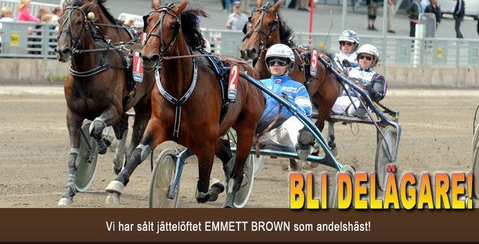 emmett-brown-banner