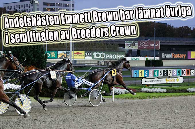 emmett-brown-breeders-crown-20141019