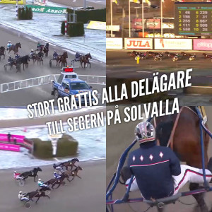 Feel-the-Muscle--stallkenny-Jim-Oscarsson-Solvalla-20160205