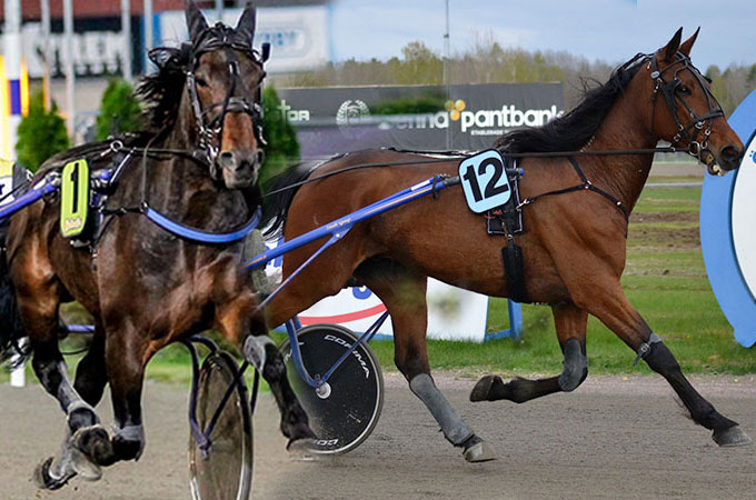 countdown-say-that-again-stallkenny-v75-romme