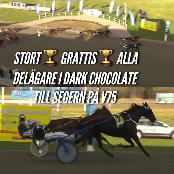 dark-chocolate-stallkenny-johnny-takter-bo-naslund