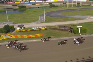 feel-the-muscle-stallkenny-jim-oscarsson-andelshast-solvalla-20160729