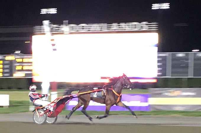 stallkenny-d-one-andelshast-marcus-johansson-meadowlands-20161028
